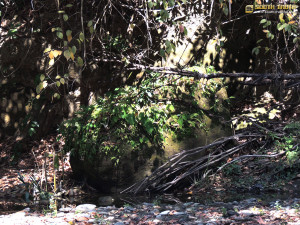 বংটো - বড় পাথর - নৈবেদ্য দিলে চোর মারা যায় বলে পাহাড়িদের বিশ্বাস (ছবি: লেখক)