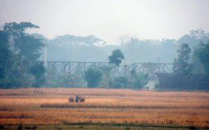 লাতু সীমান্তের একাংশ - আতুয়া গ্রাম থেকে - ডিসেম্বর ২০১৬